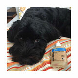 Flea Repellent For Dogs