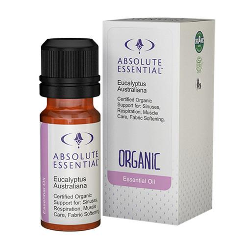 Eucalyptus Blue Gum (Organic)