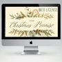 The Christmas Promise Bible Study Teaching Plan (Student + Adult Edition)