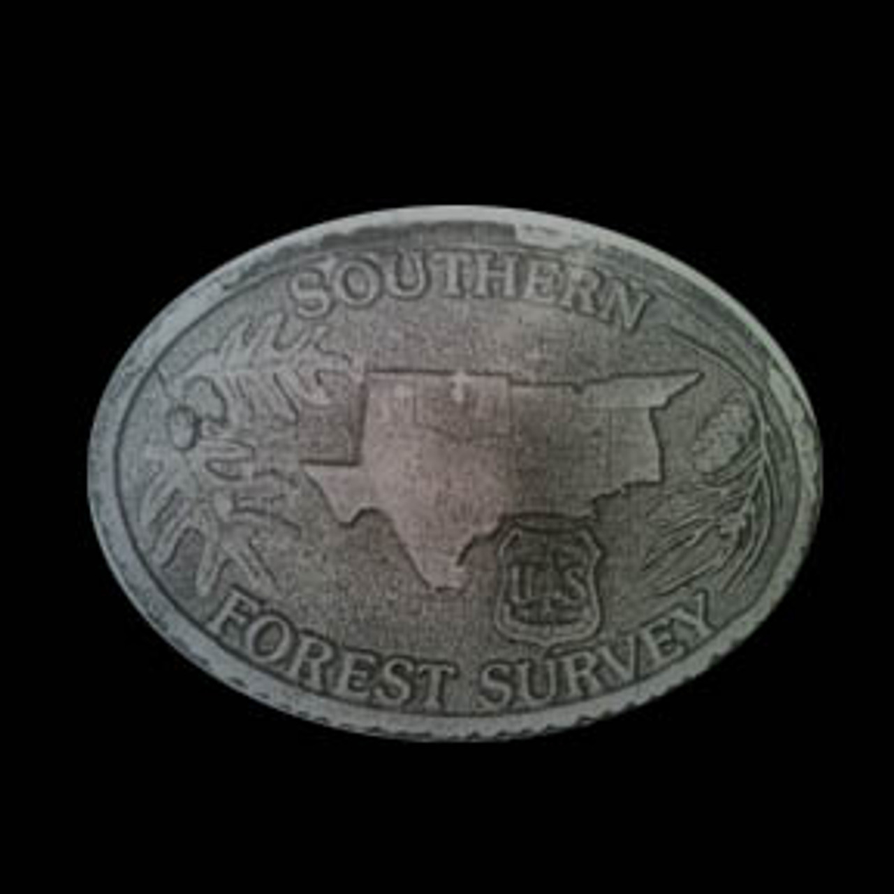Region 8 Southern Forest Survey Buckle