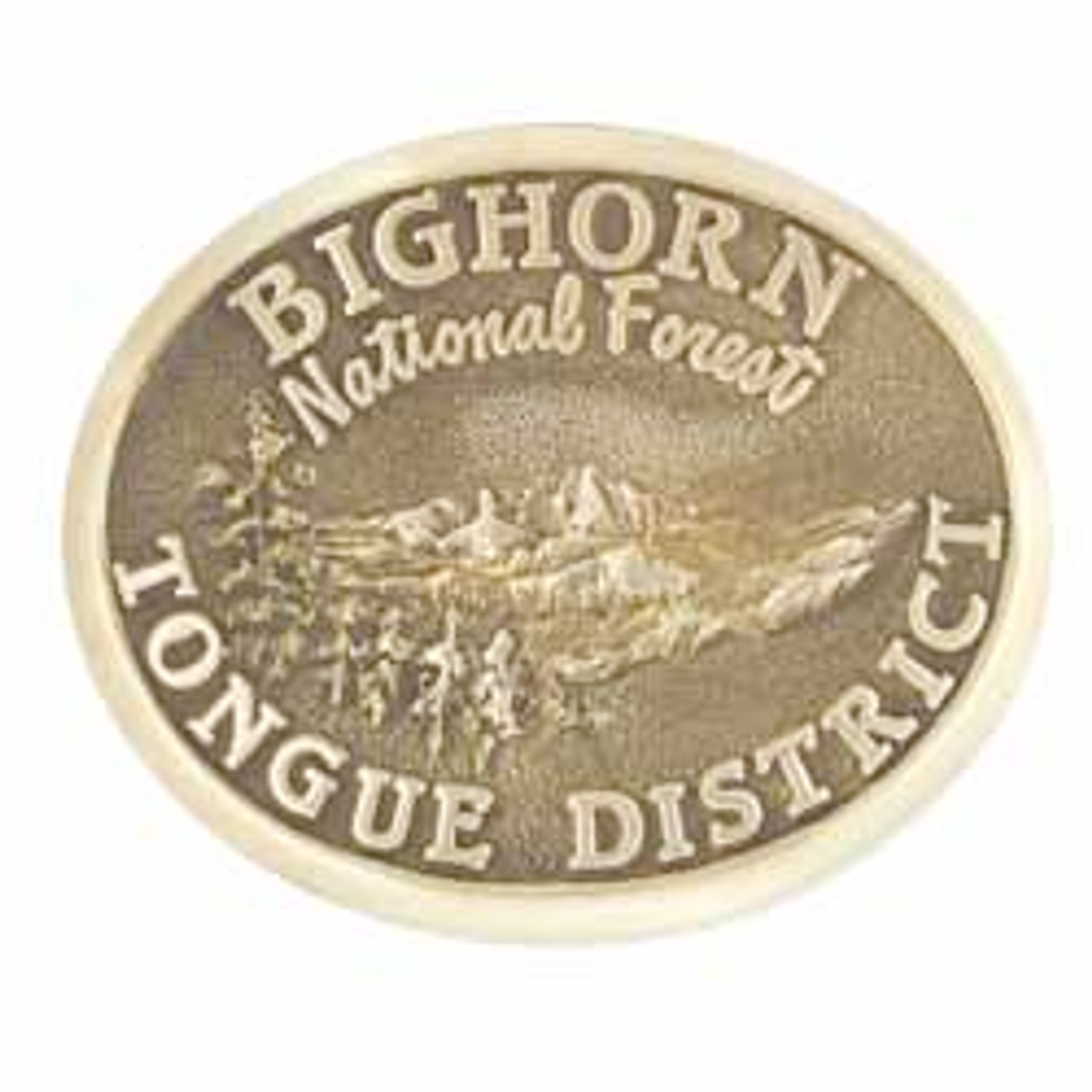 Tongue Ranger District Buckle