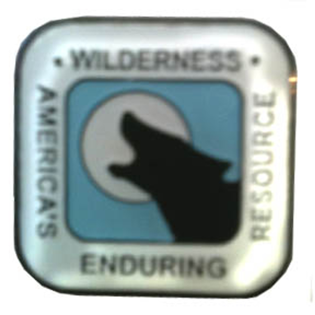America's Wilderness Lapel Pin