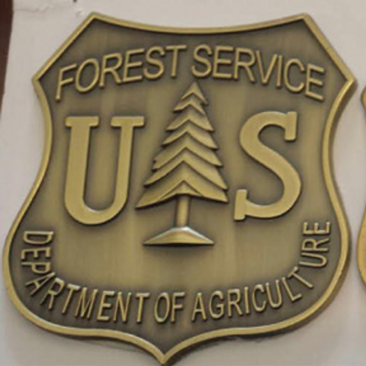 US Forest Service Brass Plated Shield Medallion (Large)