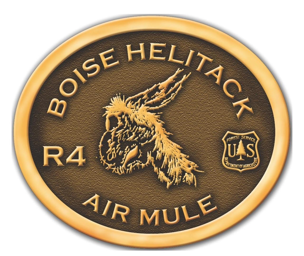 Boise Helitack Air Mule R4 Buckle (RESTRICTED)