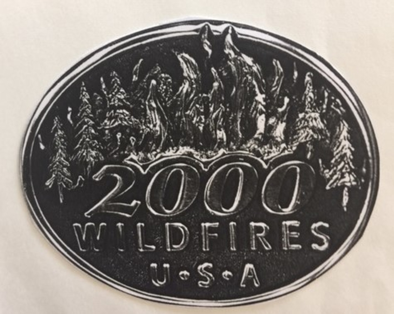 2000 Wildfires Buckle