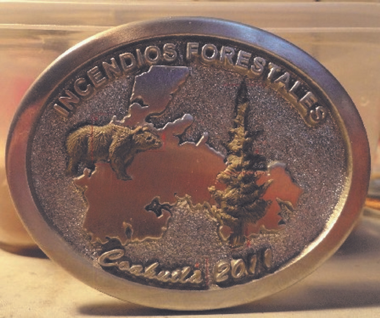 Incendios Forestales Coahula 2011 Buckle