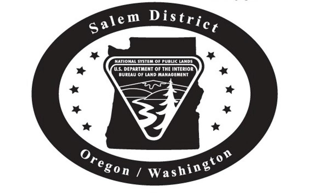 Oregon Washington Salem District Bureau of Land Management Buckle