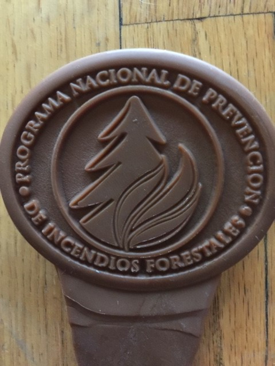 Programa Nacional De Prevencion De Incendios Forestales Buckle