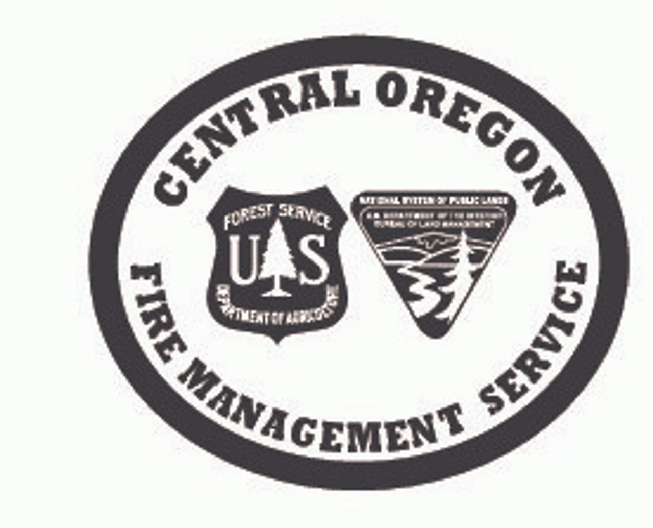 Central Oregon Fire Management Service Buckle