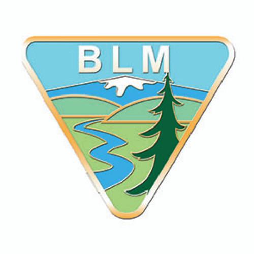 Bureau of Land Management Simple Pin