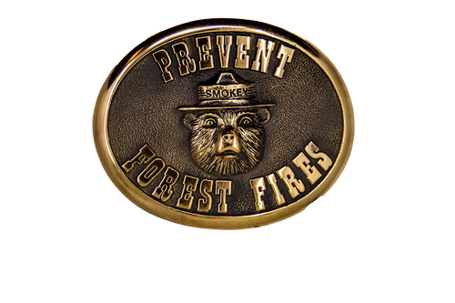 Smokey Bear Prevent Forest Fires Buckle