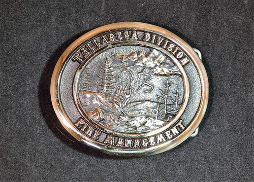 Talladega Division Fire Management Buckle