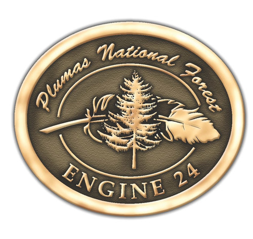 Plumas National Forest Engine 24 Buckle (RESTRICTED)