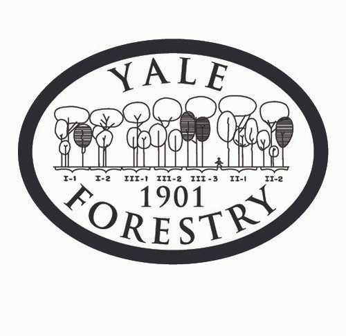 Yale Forestry 1901 Buckle