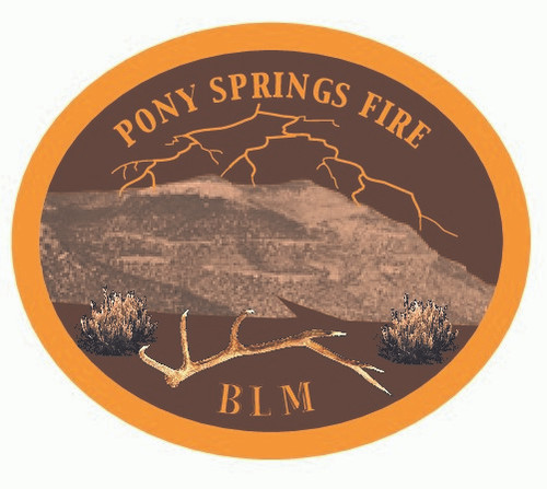Pony Springs Fire BLM Buckle (RESTRICTED)