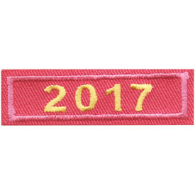 S-4446 2017 Pink Year Bar Patch