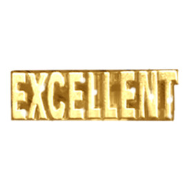 P-0196 Excellent (Text) Pin