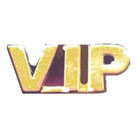 P-0199 VIP - Text Pin