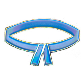 P-0212 Blue Belt Pin