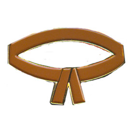 P-0213 Brown Belt Pin