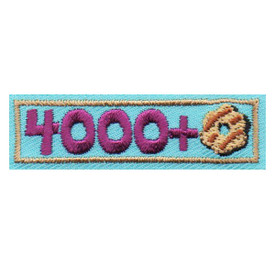 S-6351 4000+ Patch