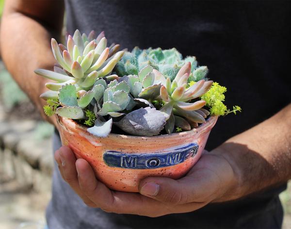 Mom succulent planter