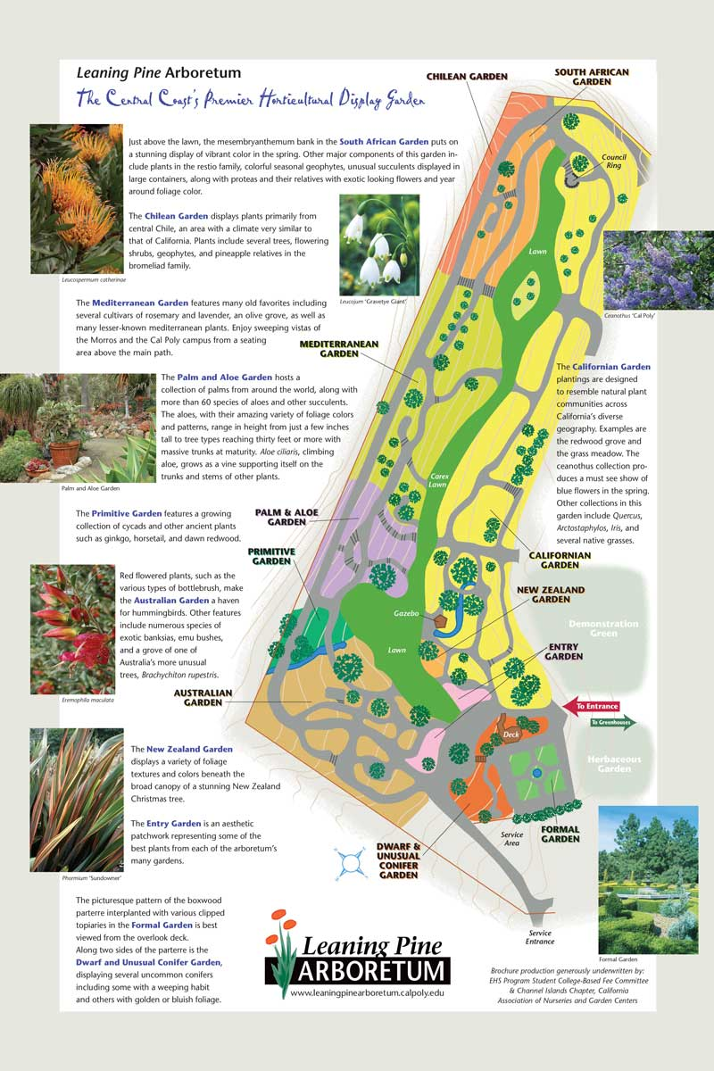 leaning-pine-arboretum-map.jpg