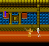 Castle of Dragon - NES Game