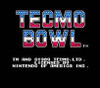 Tecmo Football Nintendo NES video game title screen image pic