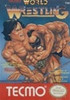 Tecmo World Wrestling - NES Game
