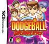 Super Dodgeball Brawlers - DS Game