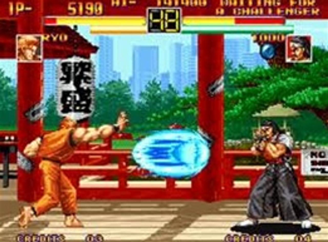 Art Of Fighting Sega Genesis Game Cartridge For Sale Dkoldies