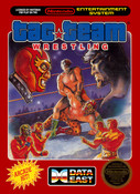 Tag Team Wrestling - NES Game