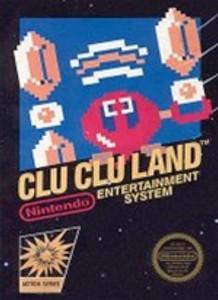 Complete Clu Clu Land - NES