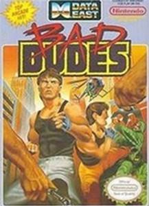 Complete Bad Dudes - NES
