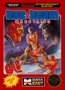 Tag Team Wrestling - NES Game