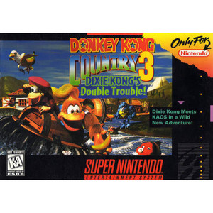 Donkey Kong Country 3 - SNES Game