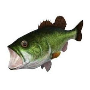 Bass Fishing Plug and Play TV Game