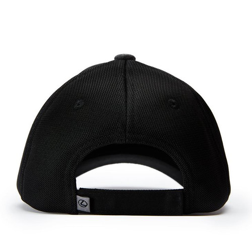 Lexus Gray and Black L Mesh Hat (back)