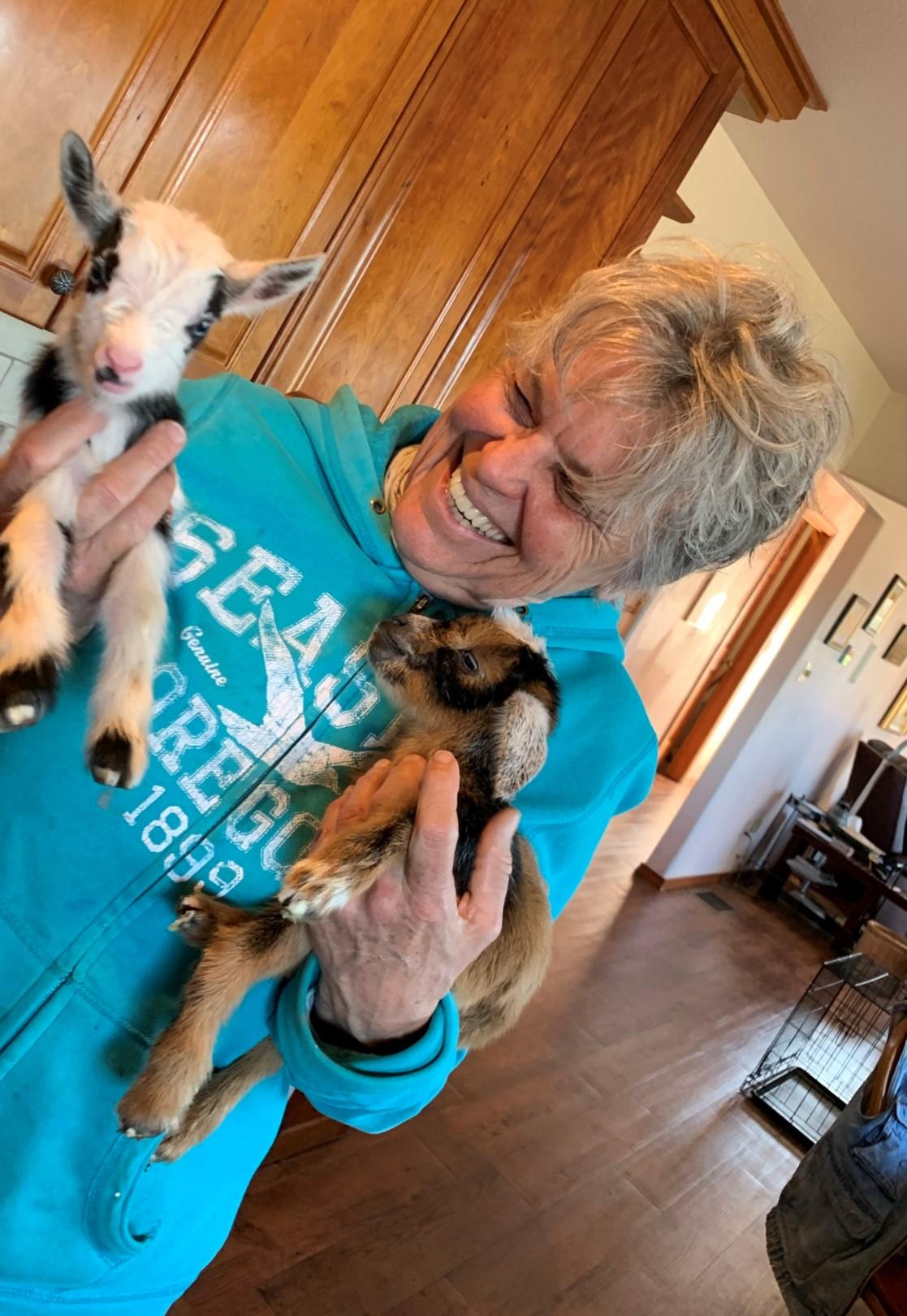 meet-the-baby-goats.jpeg