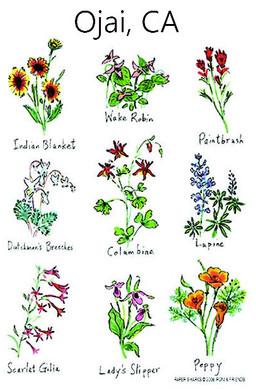 Wild Flowers, Flour Sack Towel RS116