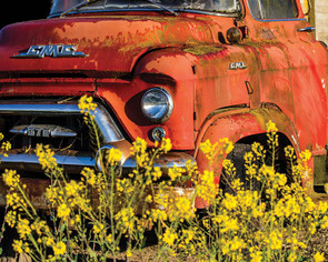 Red Truck Hart Puzzle By Chuck Haney