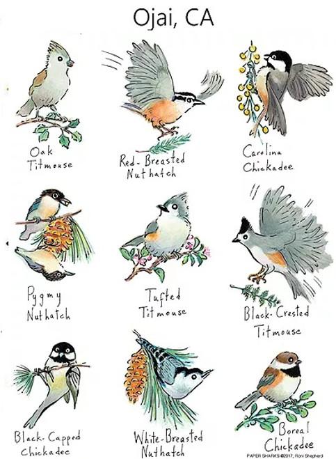 Little Birds Flour Sack Towel RS163