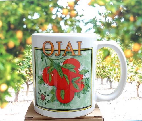 Ojai Orange Mug