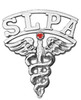 Speech Language Pathologist Assistant SLPA pins graduation pinning ceremony awards and gifts. SLPA pins are available in 14K or sterling silver.