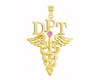 DPT Doctor of Physical Therapy Graduation Pins, Jewelry & Gifts