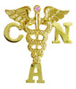 Certified Nursing Assistant CNA Nursing Pin