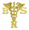 Nursing pins BSN graduation pinning ceremony.  This nursing pin is the ultimate gift of jewelry Bachelor of Science in Nursing graduate.