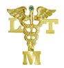 Licensed massage therapist LMT pins graduation pinning ceremony.  High quality jewelry LMT graduation pins are great recognition awards and gifts.