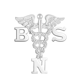 BSN Bachelor of Science in Nursing Pins, Charm & Necklace